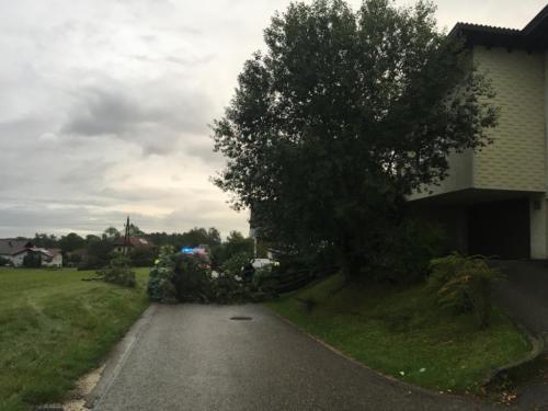 2019 - Sturmschaden Hainbach